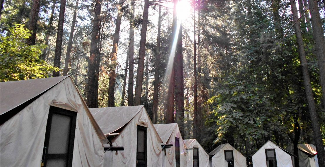 Trictracteambuilding-camping-parc-national-foret